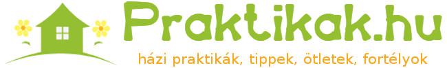 praktikák logo